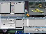 EcoDisk, MPlayer, Iconificator et DirScanner
